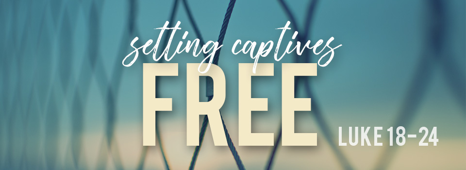 SettingCaptivesFree